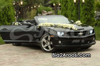 اجاره ماشین عروس نارسیس