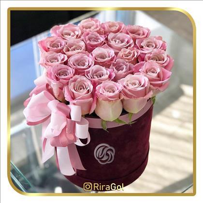 گل ری را