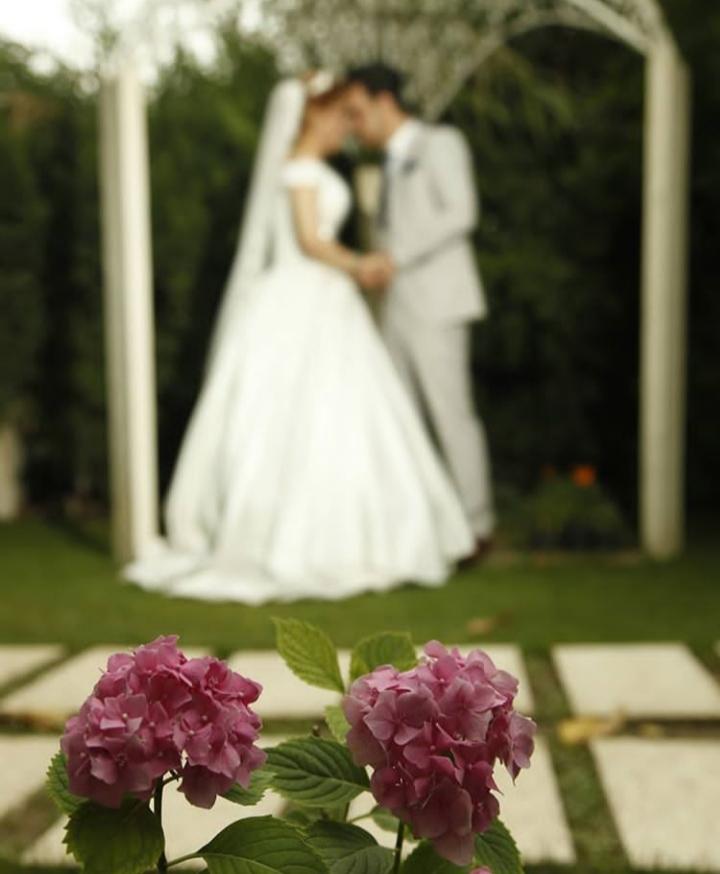 عکس عروسی گرگان