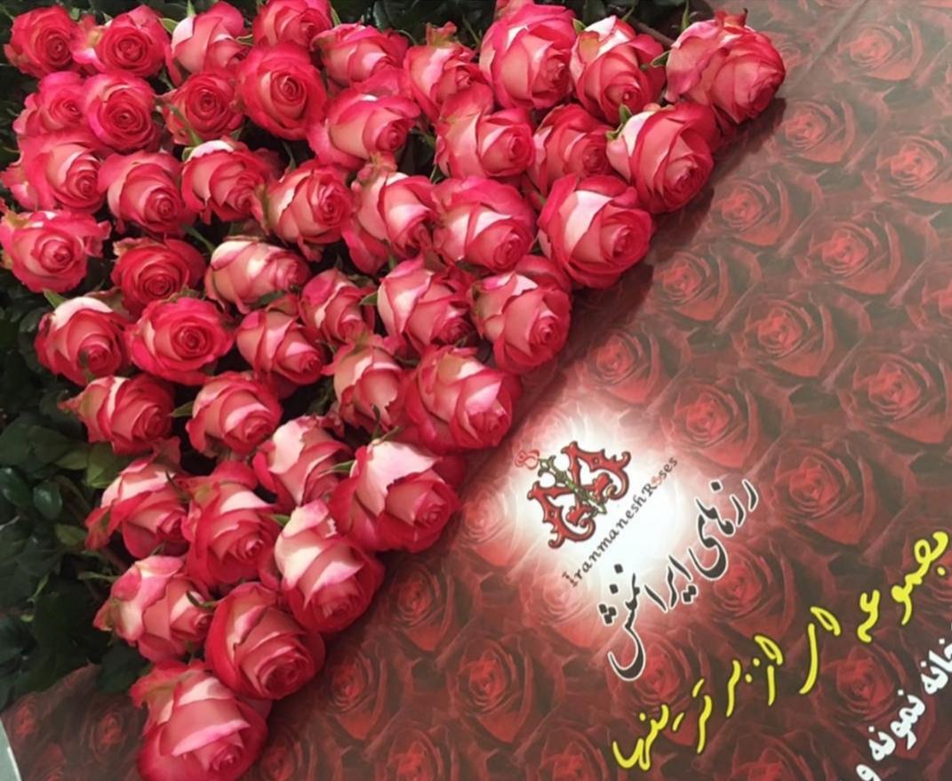 گلفروشی رزهای ایرانمنش 12