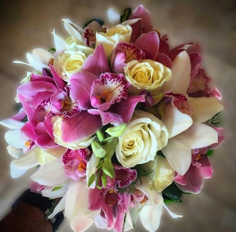 گل قدس در مشهد