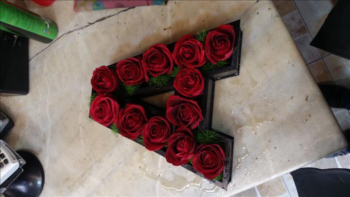 گل مینا شیراز
