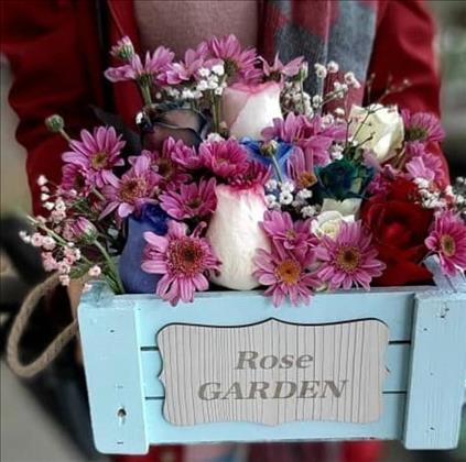 سوپر گل آنلاین رژمیا
