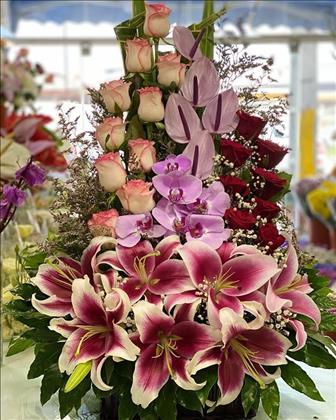 گل فروشی ارکیده