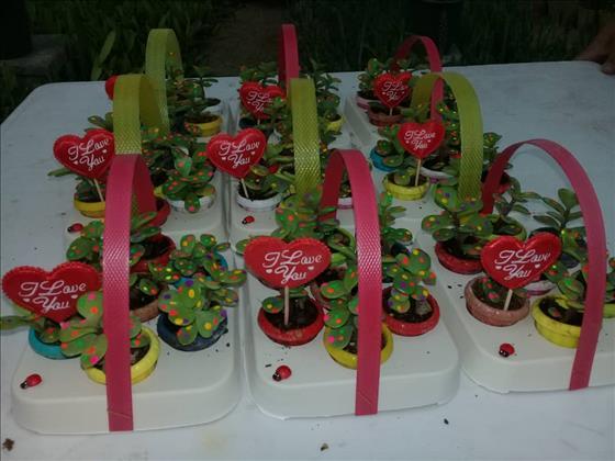 نمایشگاه گل و کاکتوس آبتاب