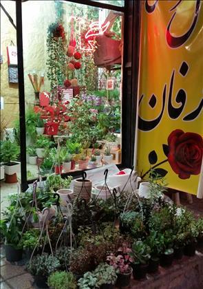 گل فروشی عرفان