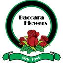گلهای باکارا