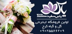 گلفروشی گل یاس سفید