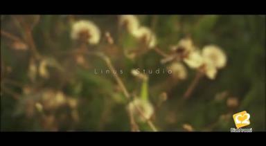 استودیو لینوس 13