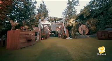 باغ تالار ارگ